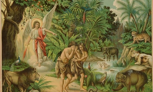ადამიანს სჭირდება ცოდვის გამო დაკარგული დიდების დაბრუნება