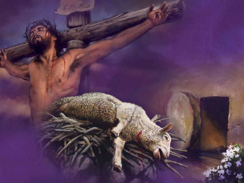 განწმედა ცოდვისგან