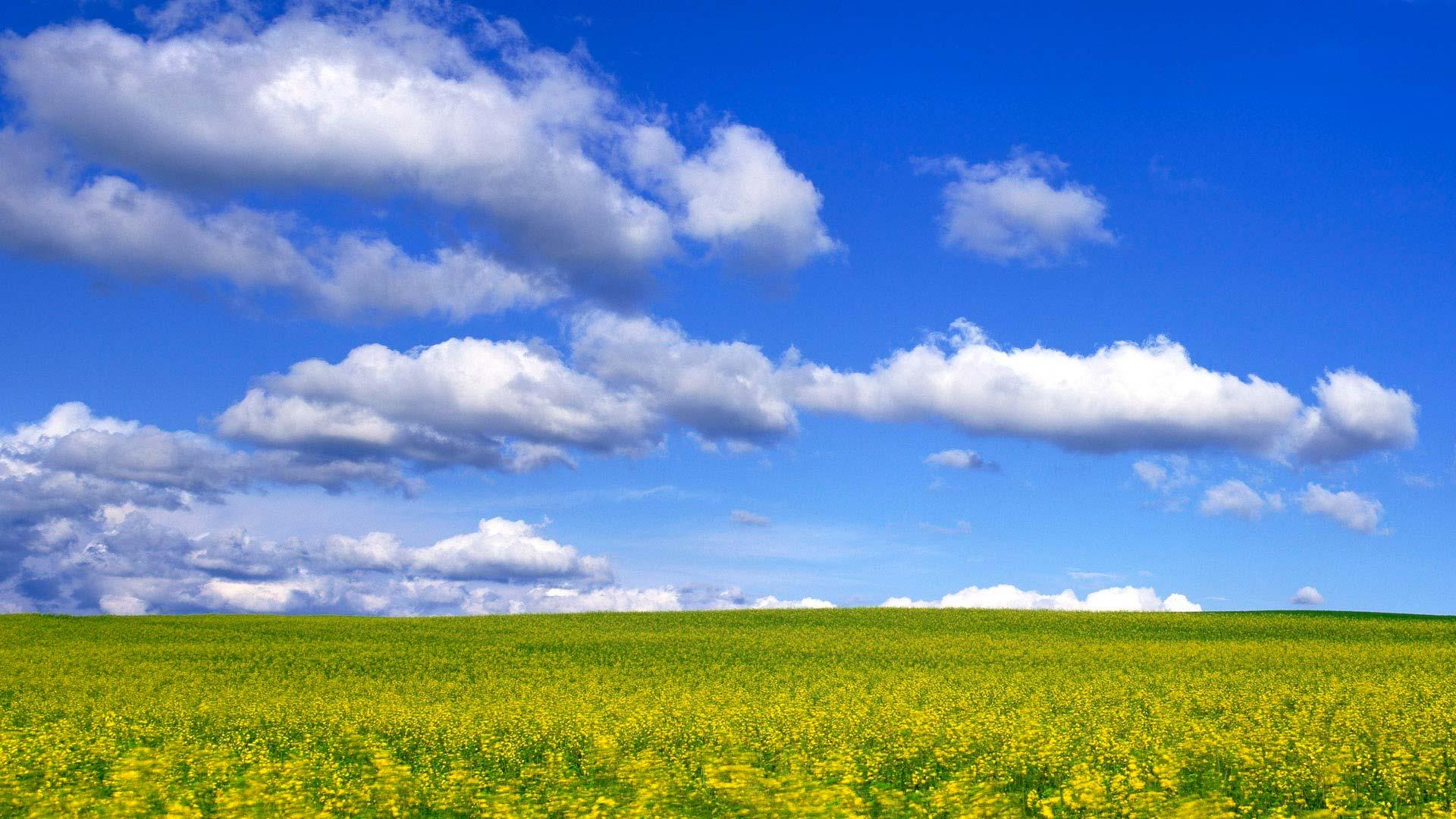 ცის და მიწის მოხმობა